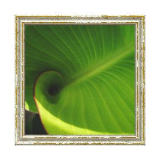 Grüner Blatt-Strudel Leinwanddruck