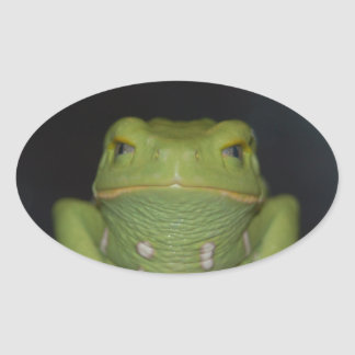 Grüner Frosch Ovaler Aufkleber