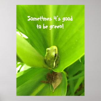 Grüner Frosch-Plakat Poster
