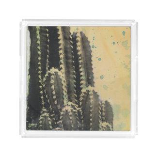 Grüner Kaktus auf gelbem Hintergrund Acryl Tablett