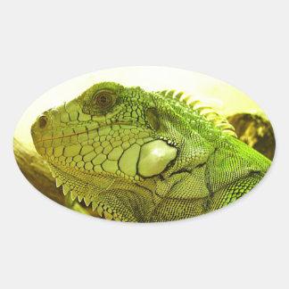 grüner Leguan Sticker