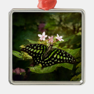 Grüner Malachit-Schmetterling Silbernes Ornament