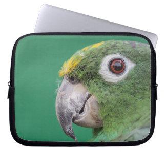 Grüner Papagei Laptop Sleeve
