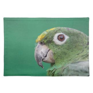 Grüner Papagei Stofftischset