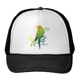 Grüner Parakeet Kult Kappen
