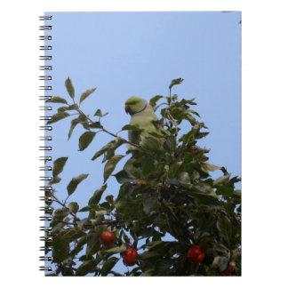 Grüner Parakeet Spiral Notizblock