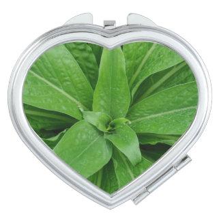 Grüner Pflanzen-Herz-Vertrags-Spiegel Schminkspiegel