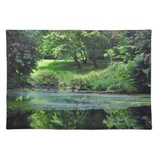 Grüner reflektierender Teich Tischset