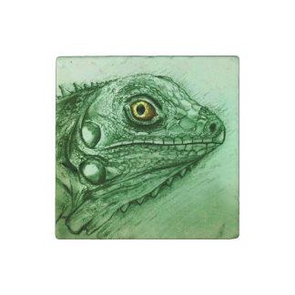 Grüner Reptil-Marmor-Stein-Magnet - Leguan Steinmagnet