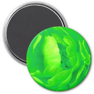 Grüner Rosen-Magnet - kundengerecht Kühlschrankmagnet