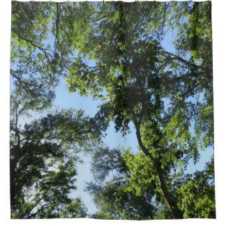 Grüner Schatten, blauer Himmel Duschvorhang