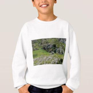 grüner Stein des Wunders Sweatshirt