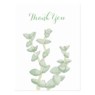 Grüner Succulent danken Ihnen Postkarte