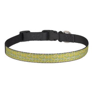 Grüner u. gelber Haustier-Kragen Haustierhalsband
