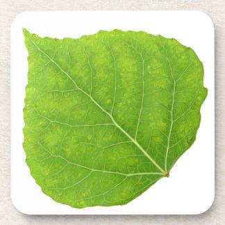 Grünes Aspen-Blatt #11 Untersetzer
