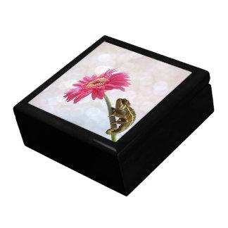 Grünes Chamäleon auf rosa Blume Erinnerungskiste