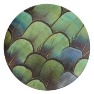 Grünes Fasan geather Muster Teller
