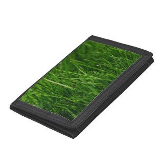 GRÜNES GRAS 1