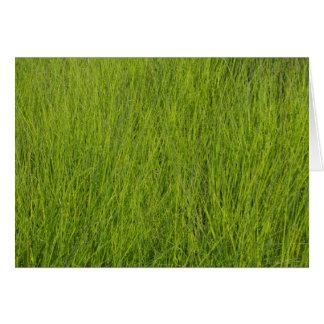 Grünes Gras Karte