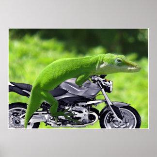 Grünes hawaiisches Gecko-Reiter-Plakat
