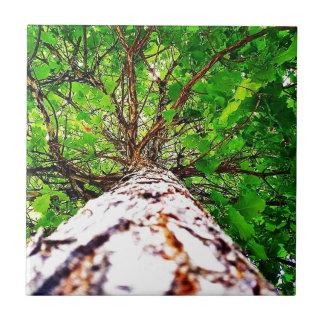 Grünes Kaleidoskop-Blätter Keramikfliese