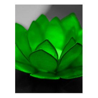 Grünes Lotus Postkarte