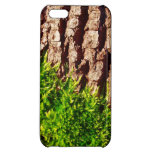 Grünes Moos auf Baumrinde-Saisonnatur-Kunst Hülle Für iPhone 5C