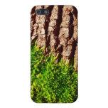 Grünes Moos auf Baumrinde-Saisonnatur-Kunst Hülle Fürs iPhone 5