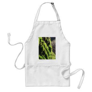 Grünes Moos ausführlich Natur des Mooses bedeckte Schürze