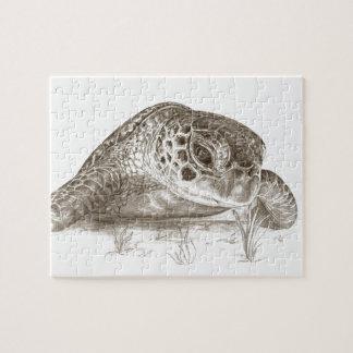 Grünes Seeschildkröte-Zeichnen Puzzle