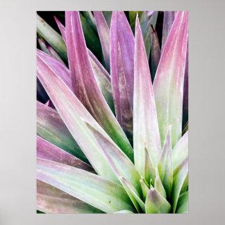 Grünes und lila Yucca-Plakat Poster