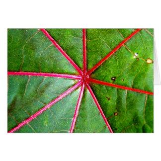Grünes und rotes Gießmaschinen-Blatt Karte