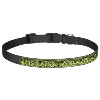 Grünes und schwarzes Hundehalsband Haustierhalsband