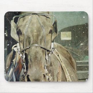 Grunge-amisches Buggy-Pferd Mousepad