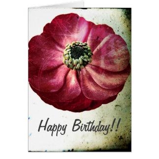 Grungey rote Ranunculus-Geburtstags-Karte Karte