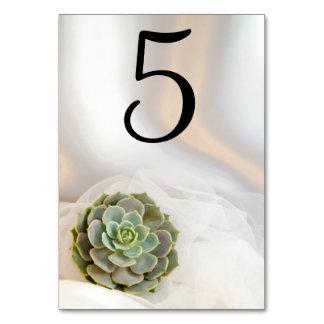 GrünSucculent auf weißen Wedding Tischnummern