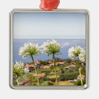 Gruppe des weißen Agapanthus nahe Dorf und Meer Quadratisches Silberfarbenes Ornament