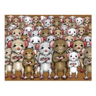 Gruppen-Bündel der Ratten-Postkarte Postkarten
