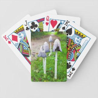 Gruppieren Sie Tintenpilze nahe Waldweg im Fall Bicycle Spielkarten