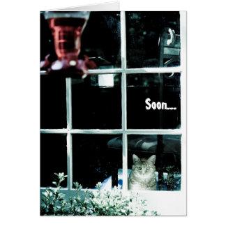 Gruselige Katzen-Geburtstags-Karte Karte