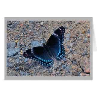 Gruß-Karte - Frack-Schmetterling Karte