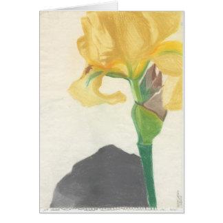 """Gruß-Karten mit """"gelber Iris"""" durch Karte"""