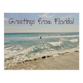 Grüße von Florida Miami Postkarte
