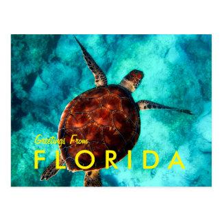 Grüße von Florida Postkarte