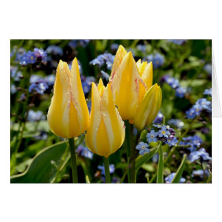 Grußkarte der gelben Tulpen