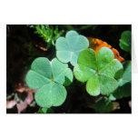 Grusskarte drei grüne Kleeblätter, blanko Grußkarte