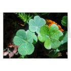 Grusskarte drei grüne Kleeblätter, blanko Karte
