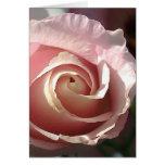 Grusskarte hübsche rosa Rose Grußkarte