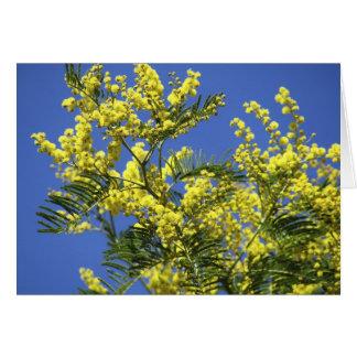 Grußkarte: Mimosen-Blumen Karte