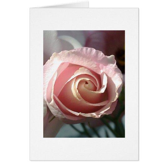 Grusskarte rosa Rose Karte
